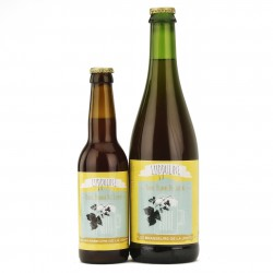 Bière artisanale luppuline - blonde - 5.5%